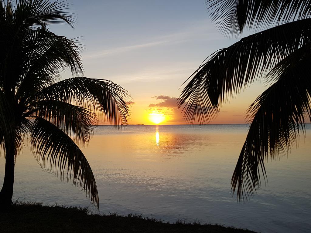 Guadeloupe FFHY Uncategorized 263